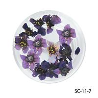 Сухоцветы фиолетового цвета в баночках. SC-11-7