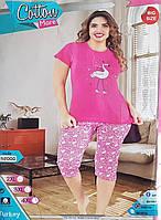 Женская пижама с бриджами Фламинго