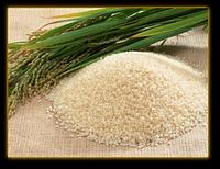 Водорастворимое масло Зародышей риса  50 мл / 1л