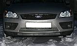 Декоративно-защитная сетка радиатора Ford Focus бампер, фото 3