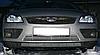 Декоративно-защитная сетка радиатора Ford Focus бампер