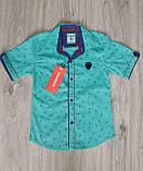 Нарядный комплект для мальчика подростка: рубашка с коротким рукавом и брюки электрик, фото 3