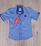 Нарядный комплект для мальчика подростка: рубашка с коротким рукавом и брюки электрик, фото 4