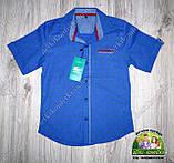 Нарядный комплект для мальчика подростка: рубашка с коротким рукавом и брюки электрик, фото 5