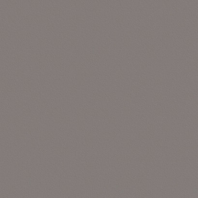Серый пыльный ГЛЯНЕЦ U732