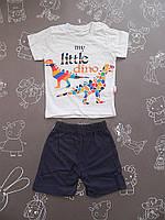 Детский летний костюм Дино для мальчика на 6 месяцев