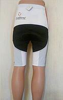 Велошорты лого Nalini с памперсом (XXL, M, S)