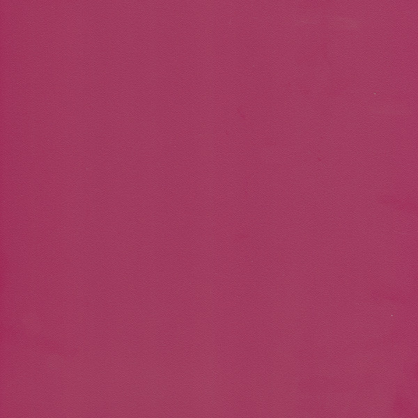 Фуксия розовая (Фуксия) U337