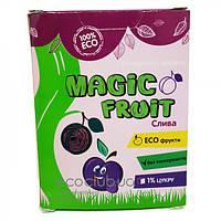 Пастила сливовая Magic Fruit 100г