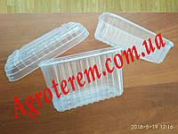 Пинетки для клубники (ягод) 1000 г, фото 1