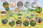 Пластиковые сетки в приусадебном хозяйстве