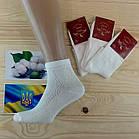 Носки мужские с сеткой Легка Пара 25-27 размер. белые НМЛ-06459, фото 3