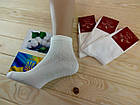 Носки мужские с сеткой Легка Пара 25-27 размер. белые НМЛ-06459, фото 2
