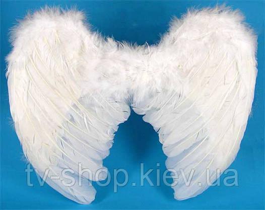 Крылья перьевые белые