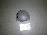Заглушка бампера перед (Хечбек) Renault Megane III 09-13 (Рено Меган 3), 20100993
