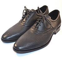Летние мужские туфли кожаные черные в сеточку Rosso Avangard Felicite Black Perf, фото 1