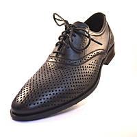 ac3ea8c5e Летние туфли обувь больших размеров мужская Rosso Avangard BS Felicite  Black Perf