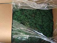 Стабилизированный мох опт цвета в ассортименте трава norske moseprodukter, фото 2