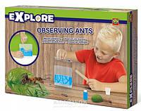 Игровой набор для юного зоолога Ses Муравьиная ферма