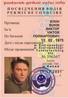 Прикольные Водительские  права Букины , фото 1
