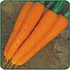 Морковь Стромболи F1 100 000 сем. Клоз (Clause).