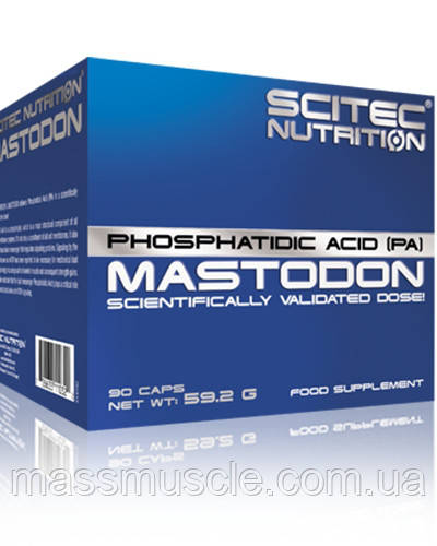 Тестостероновый бустер Scitec Nutrition Mastodon 90 caps