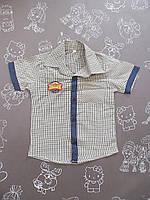 Детская летняя рубашка в мелкую клеточку для мальчика на 1-2 года 1р