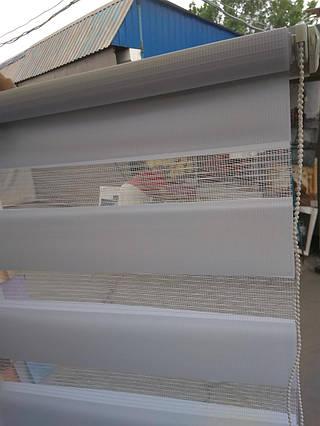 Рулонные шторы День - Ночь Secret 215 55×150 см. Акционная цена!