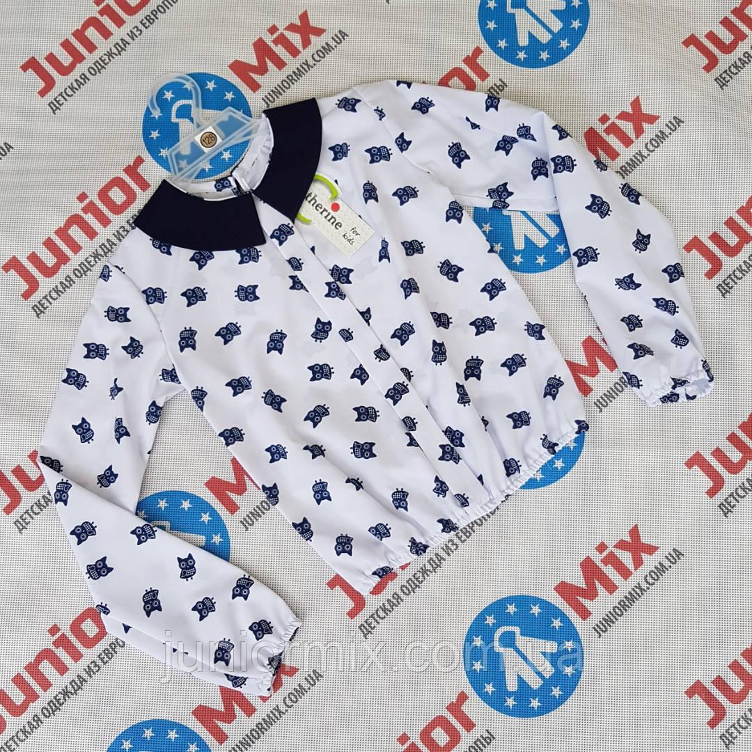 Детская блузка для девочки в совы Katherine. ПОЛЬША