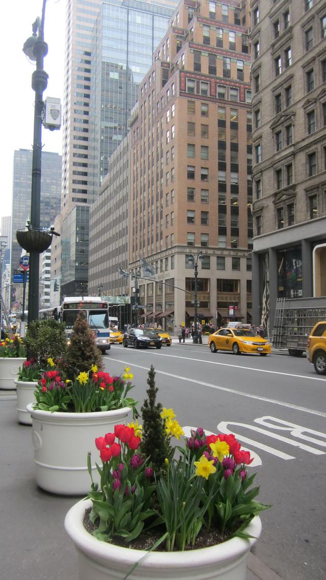 Раздел Короткие сарафаны - фото teens.ua - Нью-Йорк,Пятая авеню