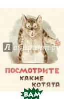 Владимир Матвеев Посмотрите какие котята