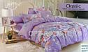 Постельное бельё цветное (двухспальный размер)