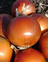 Семена лука Империос (Дамла) F1 100 000 сем. Ларк сидс
