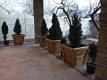 Декоративный садовый ящик из дерева для цветов или рассады.