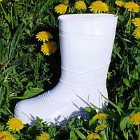 Сапоги резиновые белые женские Verona, фото 1