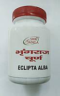 Брингарадж порошок, Эклипта белая, Bhringraj powder Shri Ganga, 100 гр, фото 1