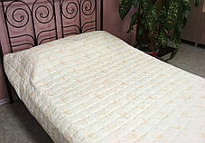 Одеяло-покрывало стеганное микрофибра 200x220см Leleka-Textile, 1348, фото 2