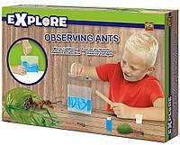 Игровой набор для юного зоолога Муравьиная Ферма Ses (25084S)