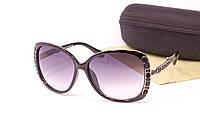 Качественные очки с футляром F56295-10, фото 1