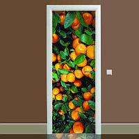 Наклейка на дверь Цитрус 01, (полноцветная фотопечать, пленка для двери)