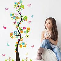 """Наклейка на стену, интернет магазин детских наклеек """"совы с птичками на дереве"""" 110*57см (лист 30*90см)"""