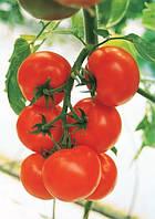 Семена томата Кристал F1 Clause 5 грамм