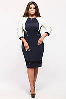 Трикотажное женское платье большого размера Анита синий/молоко 52