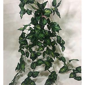 Искусственная свисающая диффенбахия. Ампельная зелень., фото 2