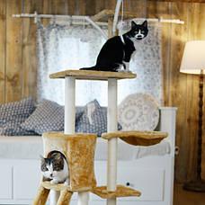 Когтеточка, домики, дряпка для кошек