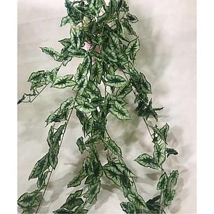 Искусственная свисающая,кустовая калатея.Ампельная зелень., фото 2