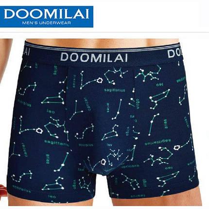 Мужские трусы боксеры Doomilai D01089, фото 2