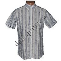 Мужская летняя рубашка M50v (р-р 46-56) с коротким рукавом оптом недорого со склада в Одессе
