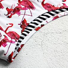 Купальник слитный мягкая чашка с вкладышем плавки бразилиана фламинго-136-11, фото 3