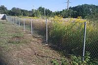 Ограждение для садового участка, фото 1